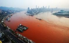 ما هو لغز المطر الأحمر الذي أذهل البشرية؟